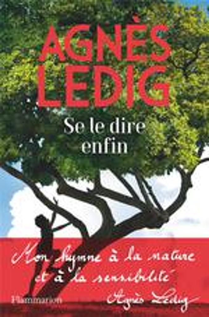 Se le dire enfin / Agnès Ledig  