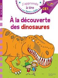 J'apprends à lire avec Sami et Julie : CE1 / Emmanuelle Massonaud | Massonaud, Emmanuelle. Auteur