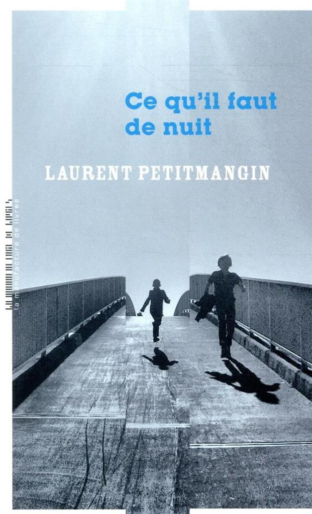 Ce qu'il faut de nuit / Laurent Petitmangin  