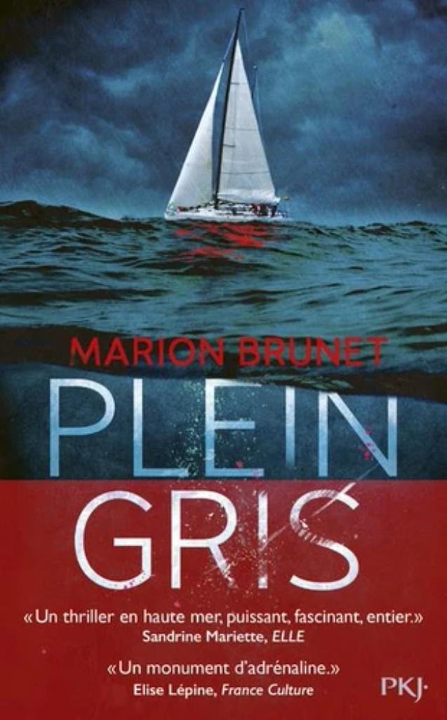 Plein gris / Marion Brunet | Brunet, Marion. Auteur
