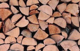 Conférence bois-énergie |